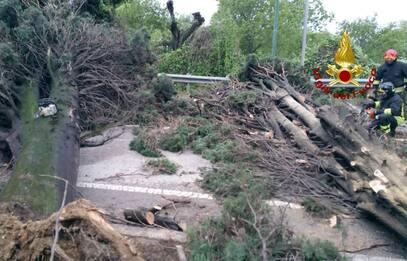 Maltempo in Italia, le foto dei danni