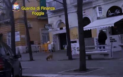 Asl Foggia: arrestati 8 furbetti del cartellino