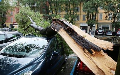 Maltempo di giugno, Cdm: stato emergenza per Emilia e Calabria