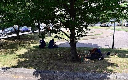 Milano, senzatetto trovato morto in aiuola vicino a Stazione Centrale