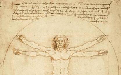 Leonardo da Vinci, l'Uomo vitruviano in prestito al Louvre