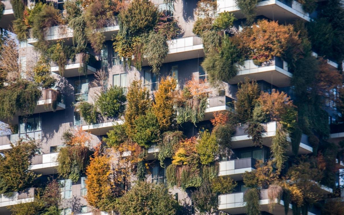 Foto Bosco Verticale Milano milano, il bosco verticale cambia colore per l'autunno e si
