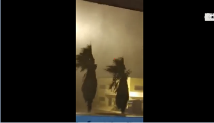Maltempo, tromba d'aria in Basilicata.VIDEO