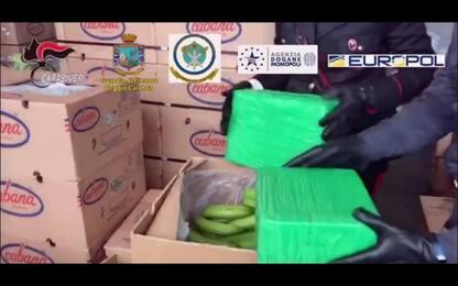 Gioia Tauro, sequestrata una tonnellata di cocaina in un container