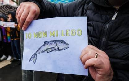 "Sardine, manifestazione a Sondrio: ""Stufi degli slogan"""