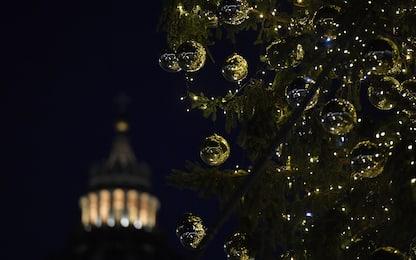 L'albero di Natale e il presepe in piazza San Pietro. FOTO