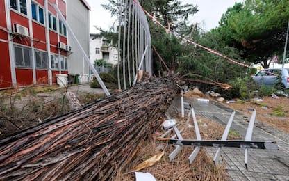 Maltempo a Palermo, danni per vento fino a cento chilometri orari