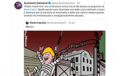 """Vignetta """"Ue come Auschwitz"""", Raggi revoca incarico al disegnatore"""