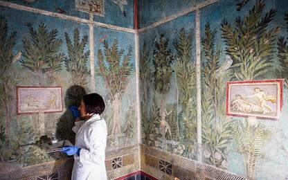 Pompei, giovedì in anteprima riapre la Casa del Frutteto