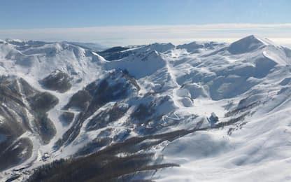 Cambiamenti climatici, il segreto del moscerino alpino