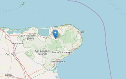 Terremoto in provincia di Foggia, scossa di magnitudo 3.6