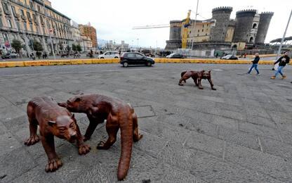 Vandali in azione a Napoli, colpiti i lupi di Liu Ruowang