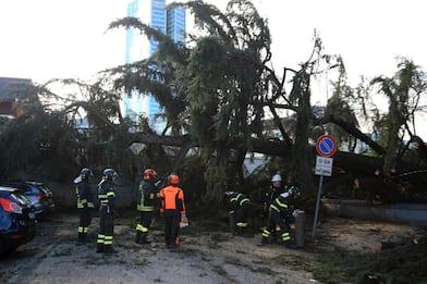 Forte vento in Lombardia, crollati alberi a Milano. FOTO