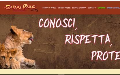 Coronavirus, manca cibo animali, Safari Park di Pombia lancia allarme