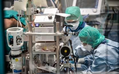 Coronavirus, Müller Italia dona 300mila euro alla sanità veronese