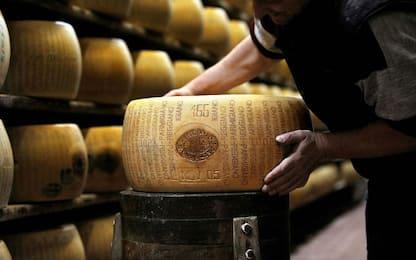 L'Italia primo esportatore di vini e formaggi negli Stati Uniti