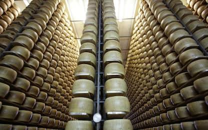 """Coldiretti: """"In commercio più Parmigiano finto che vero"""""""