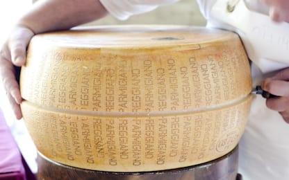 Lactalis acquista il Parmigiano Reggiano della Nuova Castelli
