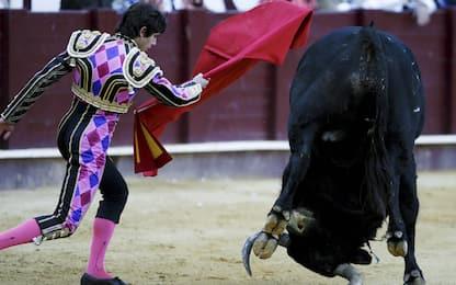 La corrida non entra nel Patrimonio dell'Umanità dell'Unesco