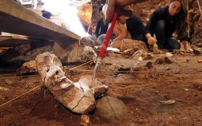 Scoperto lo strumento più antico usato dall'uomo, ha 350 mila anni