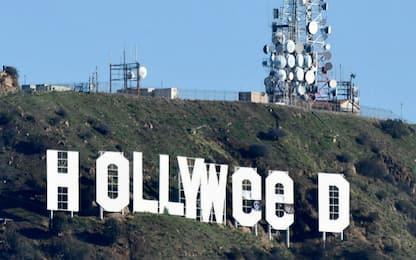 """Los Angeles, l'autore di """"Hollyweed"""" si è costituito"""