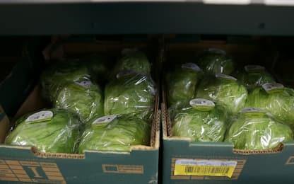 Gb, verdura razionata a causa del maltempo in Spagna