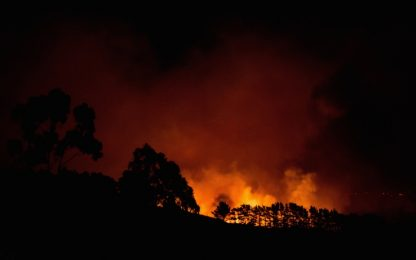 Nuova Zelanda nella morsa degli incendi