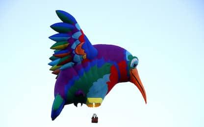 Canberra, il festival delle mongolfiere