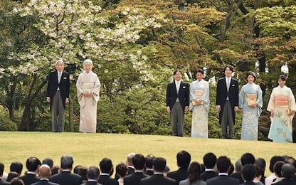 Giappone festa giardino primavera