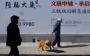 Getty_Images_Cina_cane