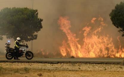 Andalusia flagellata dagli incendi