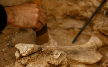 GettyImages-Atapuerca