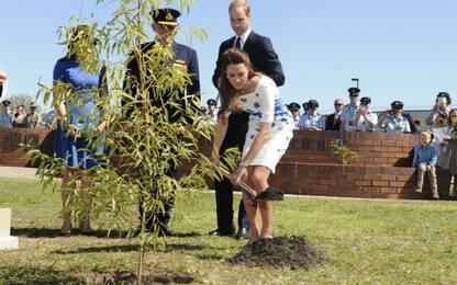 William e Kate cercano un giardiniere part time