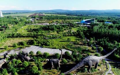 """""""Jurassic"""" Cina, i fossili di dinosauro al parco. FOTO"""