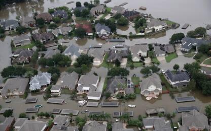 Harvey, almeno 37 morti. Esplosioni in un impianto chimico a Houston