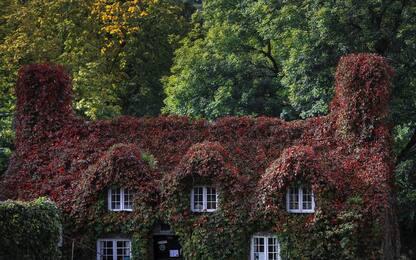 autunno nel Nord del Galles