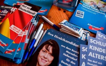 Elezioni in Germania, i sondaggi premiano l'ultradestra dell'Afd