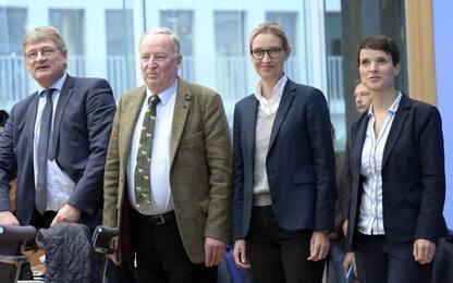 Afd terza forza in Germania, la leader Petry si esclude dal gruppo