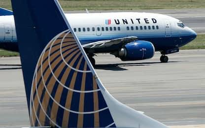 Costretto a viaggiare nella cappelliera, cane muore su un volo United