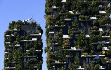 GettyImages-bosco_verticale