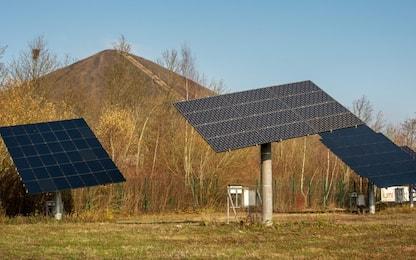 Pannelli solari, nelle microalghe il segreto per renderli più efficaci