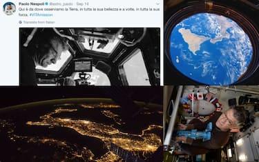 collage_nespoli_tweet_ok