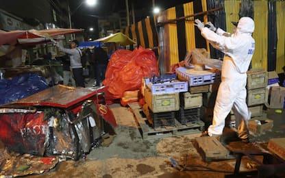 Bolivia: bombola di gas esplode a sfilata di Carnevale, almeno 6 morti
