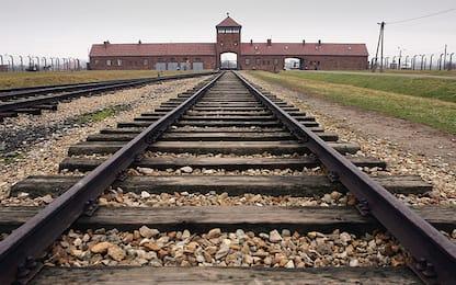 """""""Via le guide straniere da Auschwitz"""", minacciato un italiano"""