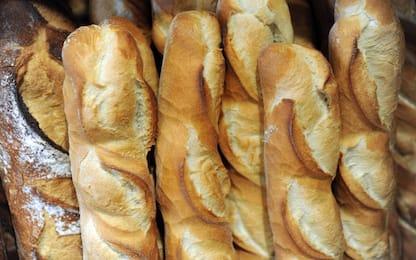 """Fornai contro supermercati: l'Antitrust indaga sulla """"guerra del pane"""""""