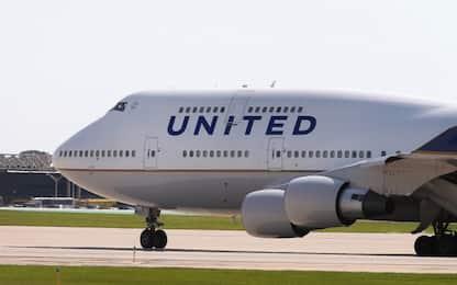 Cane imbarcato su aereo sbagliato: volo deviato negli Usa