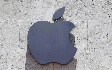 apple_ansa