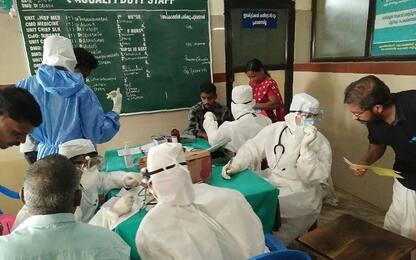 India: 10 morti e altri 2 contagiati da Nipah, virus dei pipistrelli