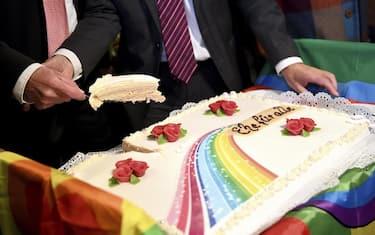 torta_gay_ansa