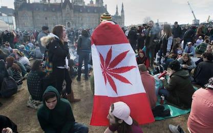 Canada: Senato approva marijuana legale, attesa Camera